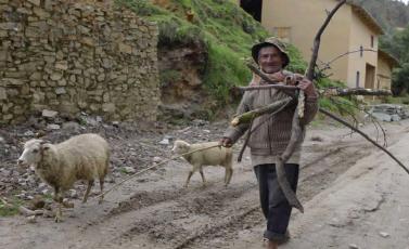 Pachas-Peru-Anziano