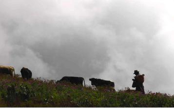 Forestazioni-Peru-Missione