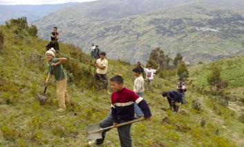 Forestazioni-Peru-Missione-Mato-Grosso