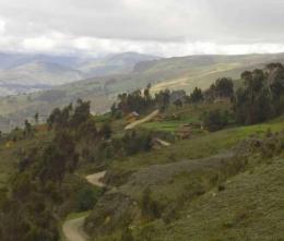 Le-Forestazioni-Peru